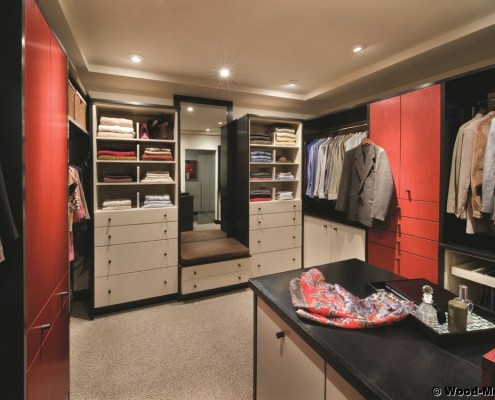 closet storage ideas mt
